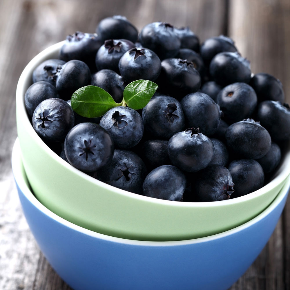 Blueberry_FO236_Main_A